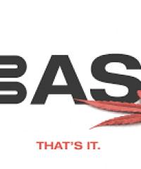 BASA Collective
