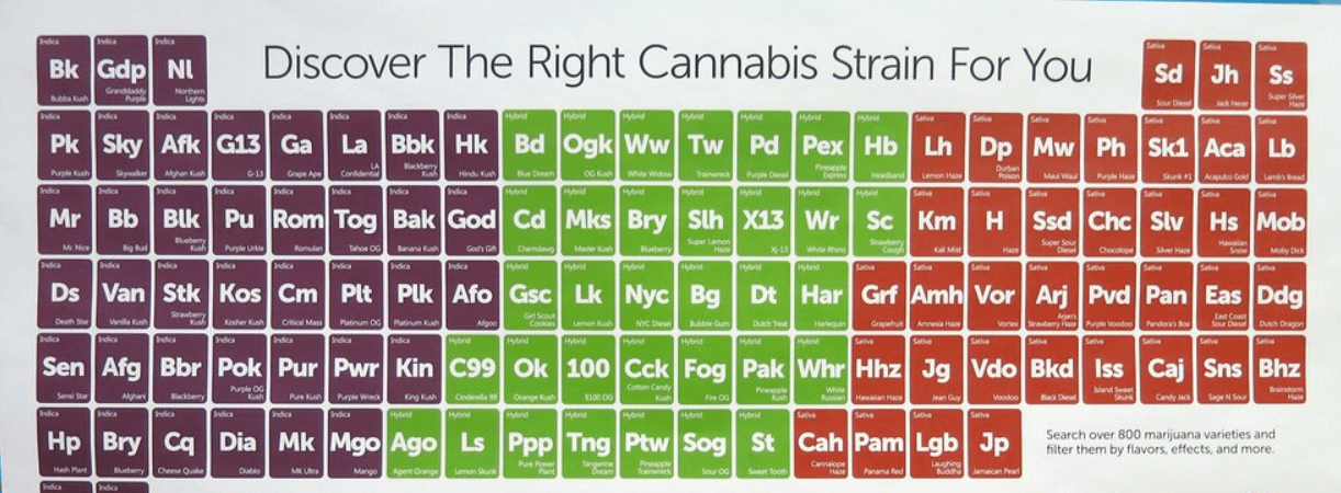 What Are The Different Types of Marijuana Strands
